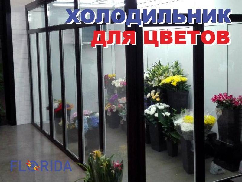 Зачем нужен холодильник для цветов?