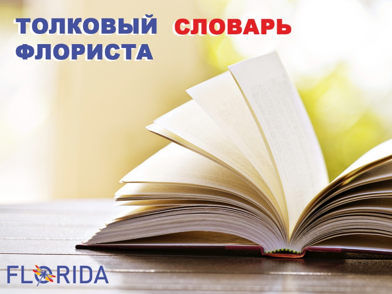 Толковый словарь флориста
