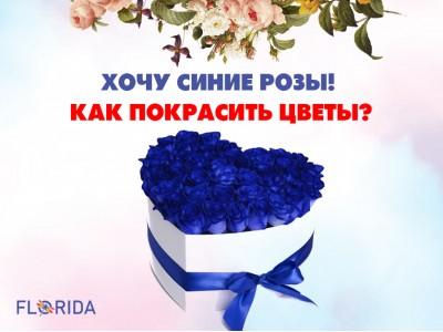 Хочу синие розы! Как покрасить цветы?