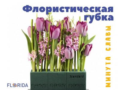 Минута славы: флористическая губка